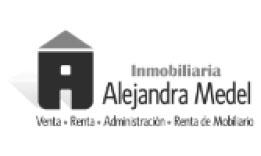 alejandra-medel
